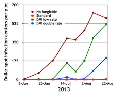 Appliquer des doses plus élevées de fongicides à des souches d'une résistance moyenne peut donner un certain contrôle du champignon mais utiliser des fongicides d'une autre famille donne de bien meilleurs résultats.