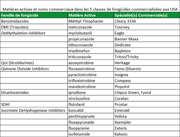 Matières actives et noms commerciaux dans les différentes classes de fongicides commercialisées sur le marché américain