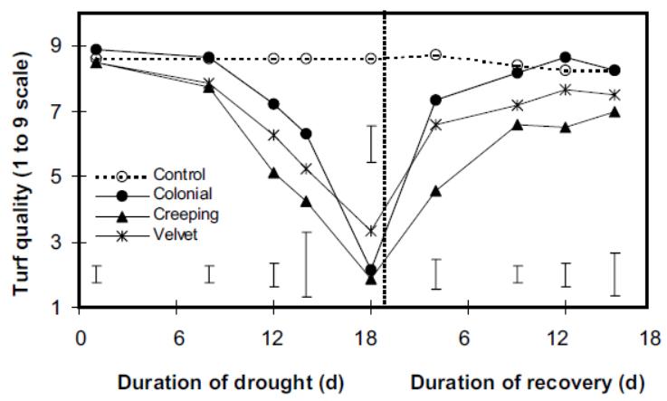 résultats d'essais de résistance à la sécheresse sur agrostides.