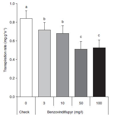 Effet secondaire du benzovindiflupyr sur la transpiration du blé