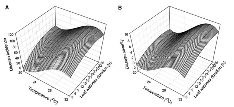 Influence de la température et de la durée d'humectation du feuillage sur l'incidence de la maladie