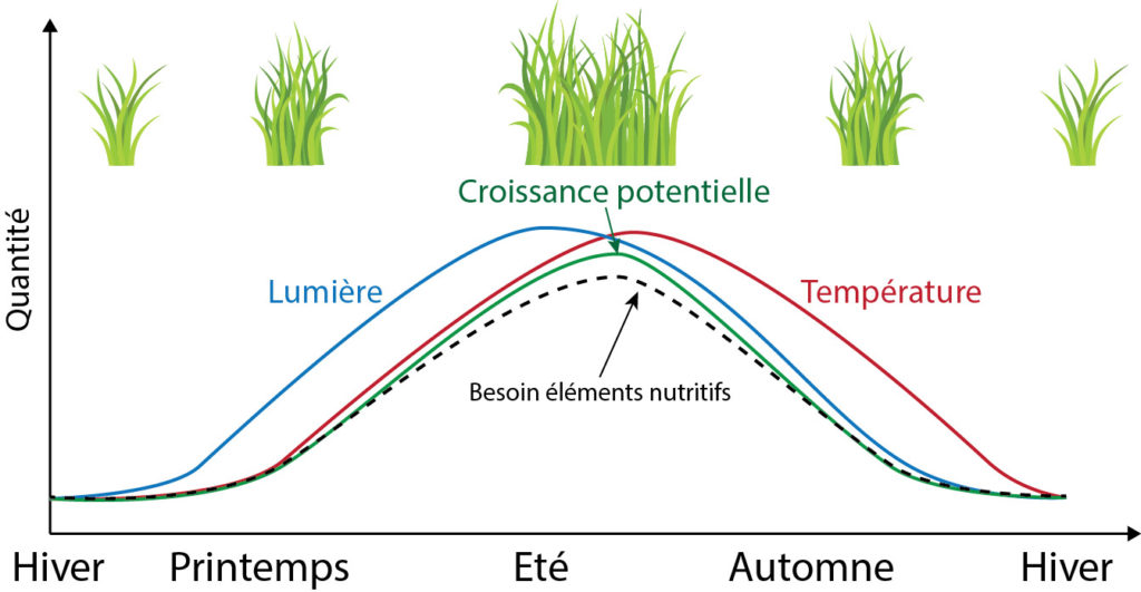 Evolution de la croissance potentielle en fonction de la quantité de lumière photo-assimilable et de la température au fil des saisons.