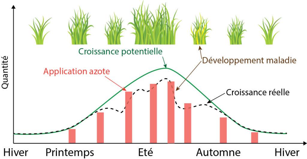 Evolution saisonnière des croissances potentielle, réelle en fonction des quantités d'azote appliquées. On notera le développement d'une maladie en été qui aura fait chuter la croissance réelle malgré des applications d'azote suffisantes.