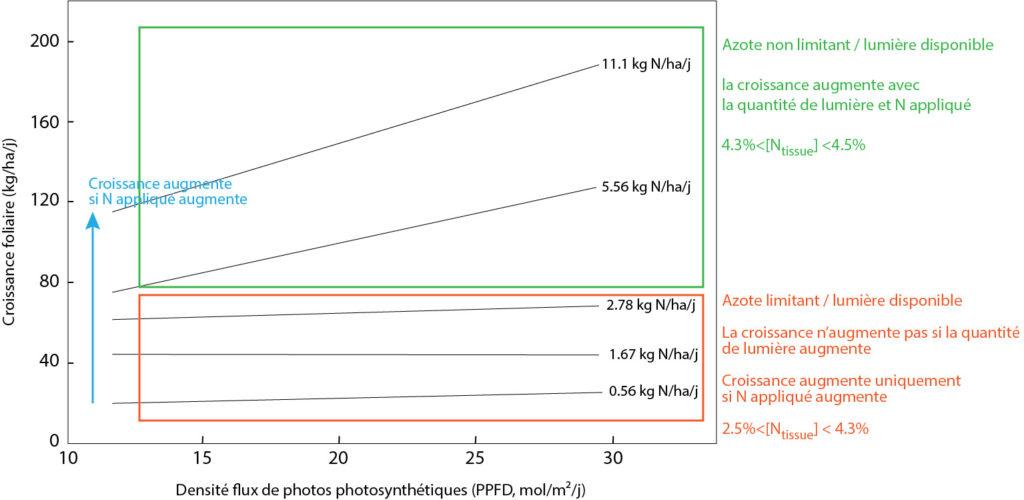 Evolution de la croissance journalière en fonction de la quantité de lumière (PPFD) pour différentes doses d'azote journalières sur raygrass anglais.