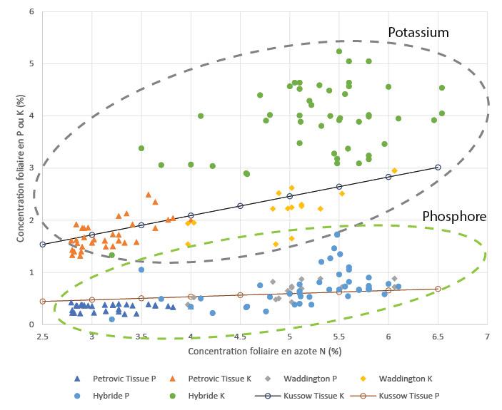 Figure 9 : Relation entre concentrations foliaires P,K en fonction de N
